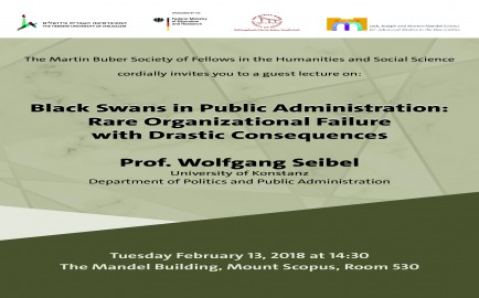 Black Swans in Public Administration