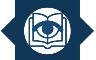 visionis_icon