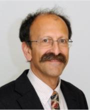 prof._david_shulman